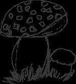 Zeichnung Fliegenpilz